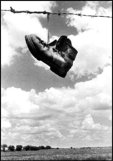 Historias de un zapato